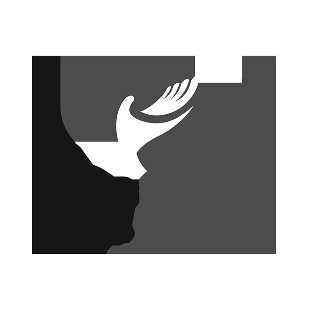 Software Gestionale NetFood